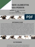 Extrusion Alimentos Para Perros Luis