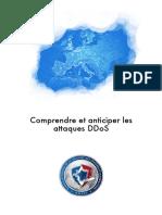 NP_Guide_DDoS.pdf