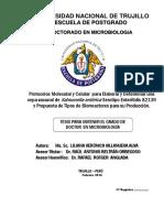 TESIS DOCTORAL - VILLANUEVA ALVA LILIANA (1).pdf
