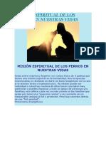 Misión Espiritual de Los Perros en Nuestras Vidas