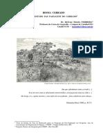 Paisagens_Cerrado.pdf
