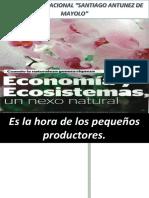 Economia y Ecosistemas