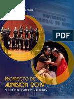 Prospecto del conservatorio nacional de música Peru lima. 2019