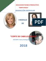 Programacion Modular 2018 Corte de Cabello Unisex y Cepillado Ctpr Sr.