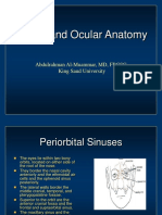 Orbital Anatomy