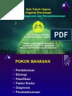 duhtubuhvagina2008.pdf