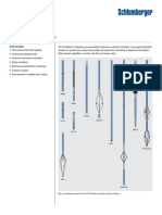 PS Platform.pdf