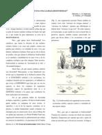 quesesacosallamadabiodiversidad-100224191410-phpapp02