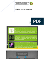 Presentación-10-Fisiología vegetal.pptx