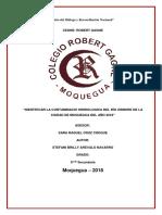 IDENTIFICAION DE CUENCAS FINAL.docx