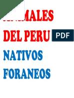 Animales Del Peru Nativos Foraneos