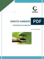 8. Proteção Às Florestas