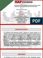 DELPHI - CORRUPCIÓN EN EL PJC-ULTIMO2.pptx