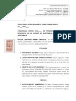 JUICIO ORAL DE DIVISION DE LA COSA COMUN NUEVO.doc