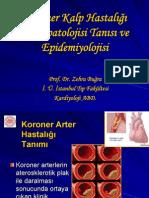 Koroner Kalp Hastalığı Fizyopatolojisi Tanısı ve Epidemiyolojisi-www.stetuskop.com