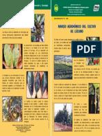 HD-4-2006-Lucumo.pdf