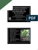 Costes Platanera - Miguel Rguez - Coplaca 10feb2012