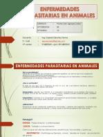 Clase Enf Parasitarias (1)