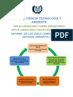 Informe Cinco Componentes Del Enfoque Ambiental 2015
