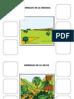 categoria semantica 1.2.pdf