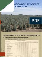 Establec. de Plantaciones (C-3)