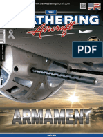 N°10 The weathering aircraft Armament