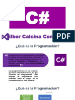 C# (1)