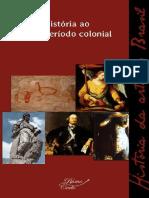 História Da Arte No Brasil, VOL 01 - Da Pré-história Ao Fim Do Período Colonial