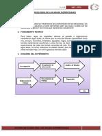 2. accion geologica de aguas superficiales.docx
