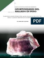 informe especial.pdf