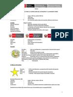 BANDERA LOGROS (1).docx