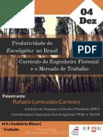 Produtividade Do No Brasil (3)