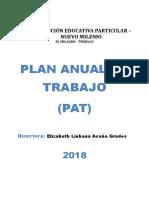 Pat Nuevo Milenio 2018