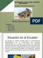 Villarruel Pasquel Urbina Piyahuaje Pupiales.parvovirusC
