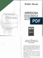 NEVES, 2002 Sobre Julian Steward.pdf