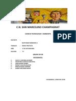 REINO PROTISTA.pdf