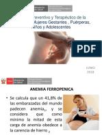 Manejo Preventivo Terapeutico Anemia Gestantes y Puerperas