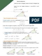 Teoría Area de Triangulo y Varios