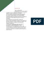 Guia do professor da EBD passo 9 de 10.docx