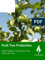 Fruit Tree Production