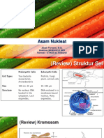 Minggu Iv_biomolekul Asam Nukleat