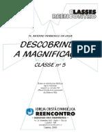 18-Livro-Magnificacao.PDF