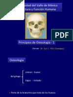 Principios de Osteologia 1.Ppt