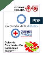 Dda Diabetes 2012b