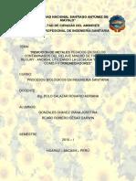 Remoción de Metales Pesados en Suelos Contaminados de Relave Minero de Ticapampa Recuay Ancash Utilizando La Lechuga y El Girasol Como Fitorremediadores
