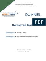 Rapport De Stage DUMMEL 2018 (Mr KHELIFA Mehdi).docx