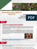 Agrobiodiversidad y Medicina Tradicional.