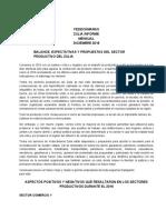 Informe Mensual Diciembre 2018 - Fedecámaras Zulia