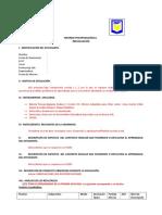 psicopedagogico FORMATO TIPO COMUNAL.doc
