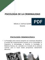 Psicologia de La Criminalidad